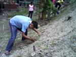 3-planting-2